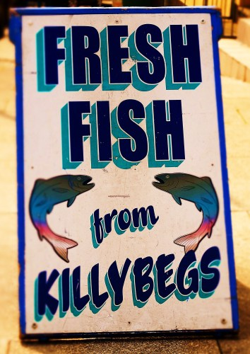 Killybegs Fish