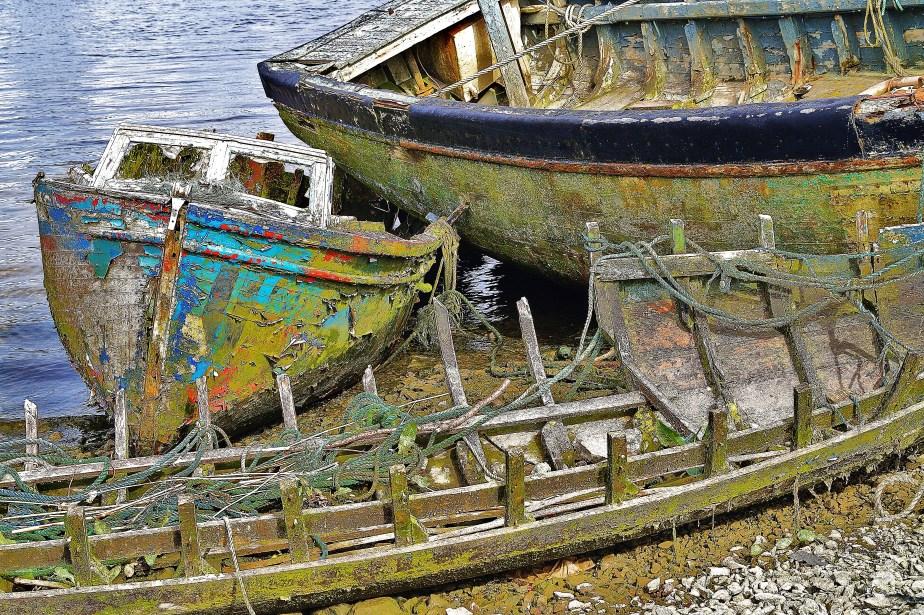 Claddagh Boats